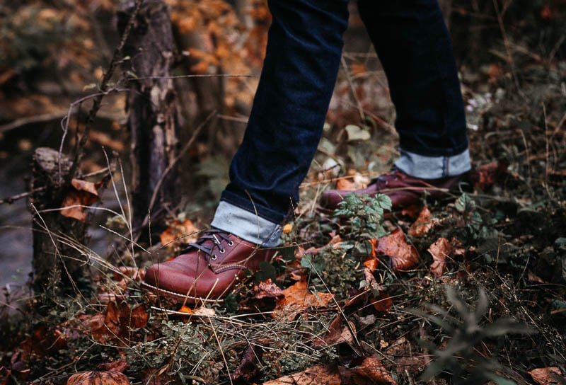 Wolverine 1000 Mile walking through autumn leaves and grass